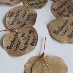 Bedankt voor je bestelling bij RMV Tactiles Eucalyptus blaadjes